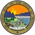 Montana Fire Logo